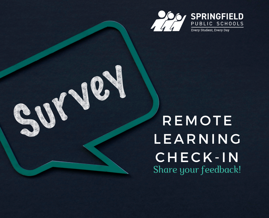 Remote Learning Check-In Survey
