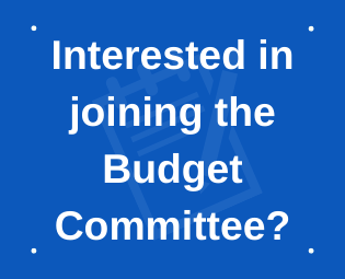 Would you like to serve on the Budget Committee?